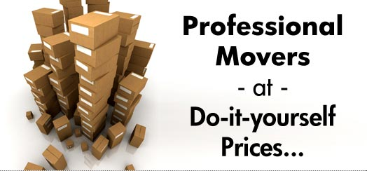 Welcome to Sioux Falls Mini Movers